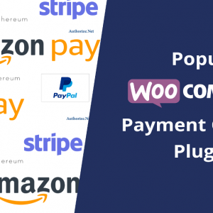 Popular WooCommerce Payment Gateway Plugins